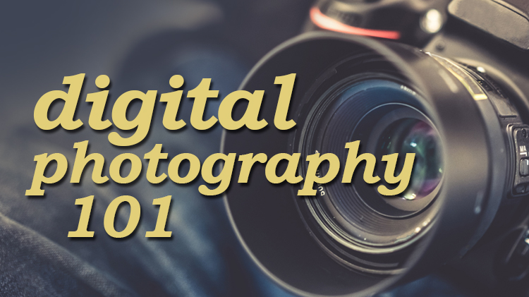 Digital Photography 101: Fundamentals of Photography