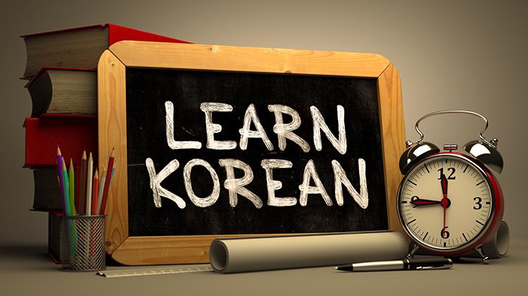 Basic Korean Language Class