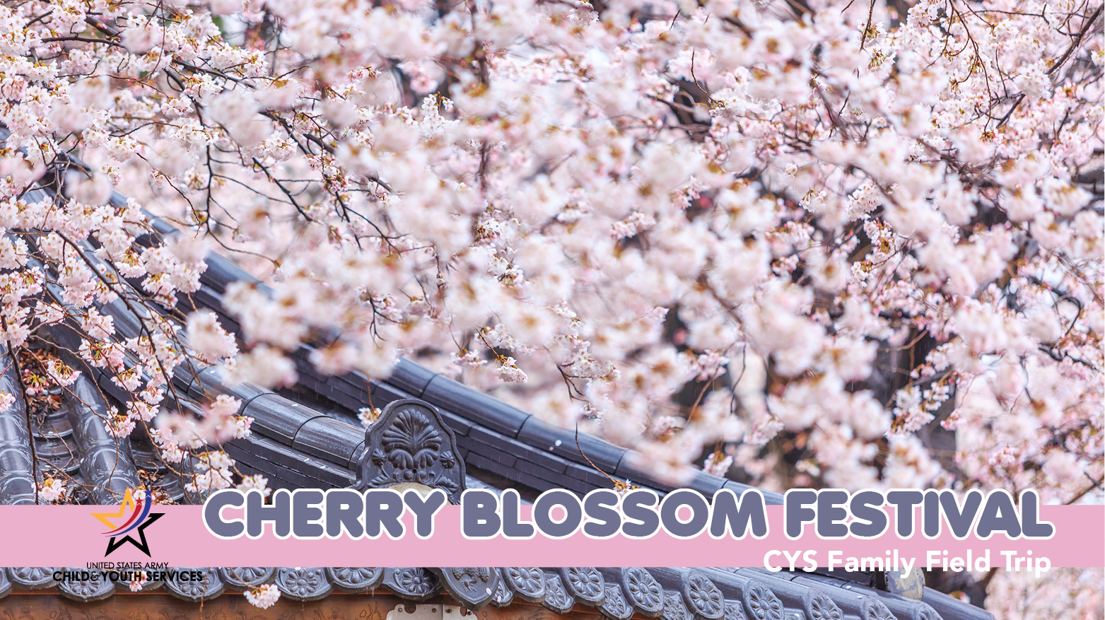 CYS Family Field Trip - Cherry Blossom Festival