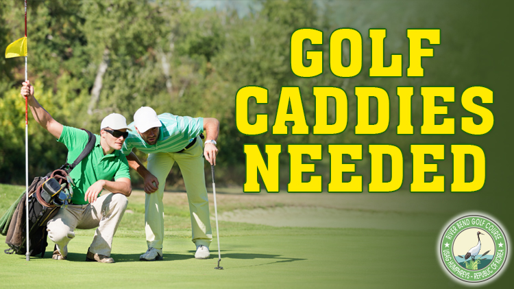 Golf Caddies Needed
