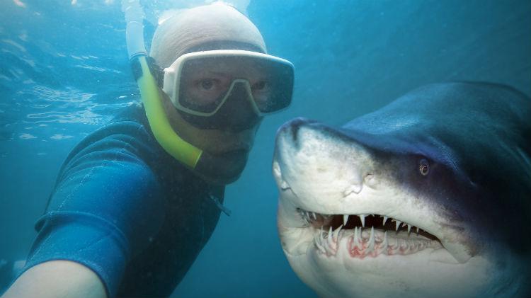 Busan Aquarium and Shark Diving