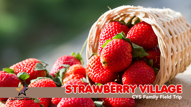 CYS Family Field Trip - Strawberry Village